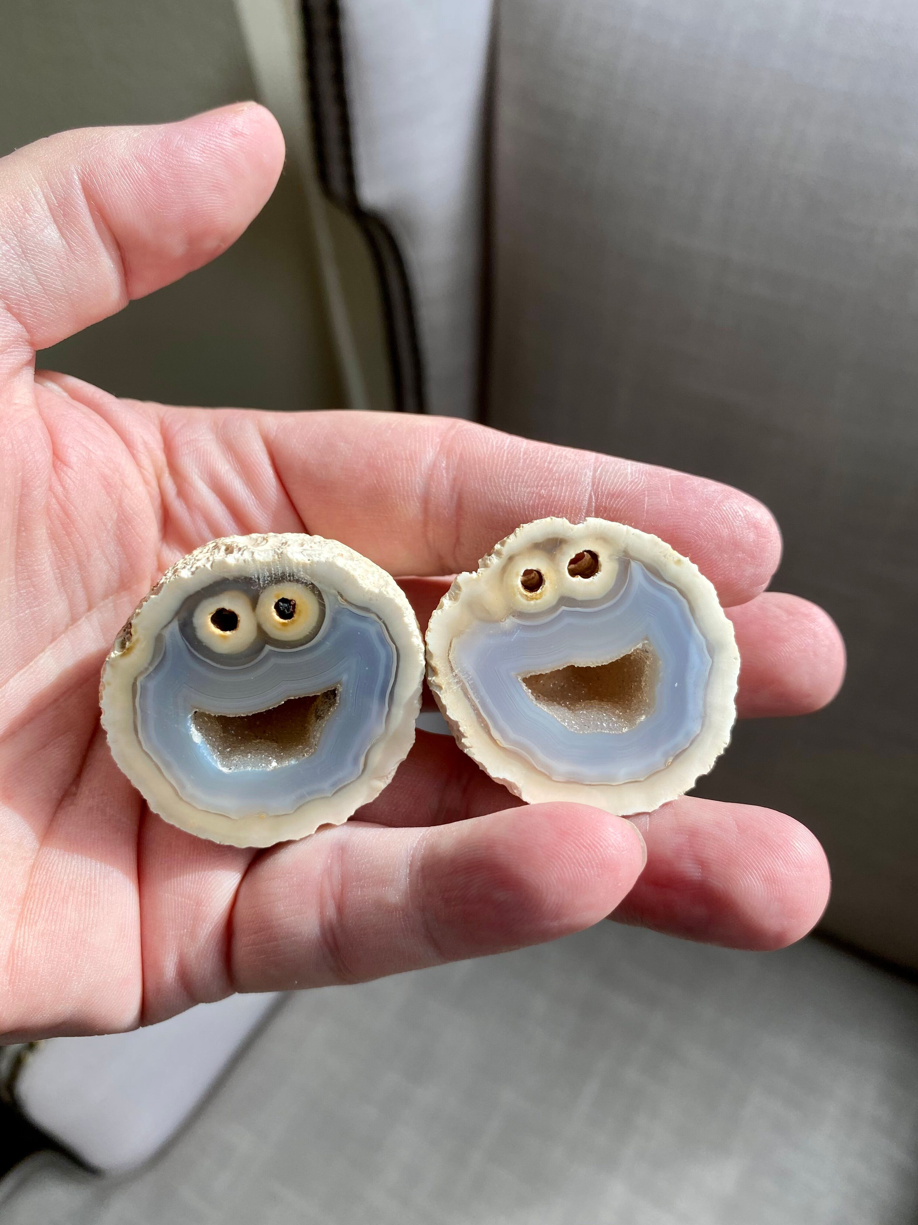 The Cookie Monster rock.