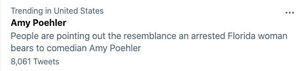 "Twitter's explanation for Poehler's name trending was: ""People are pointing out the resemblance an arrested Florida woman bea"